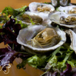 food photography restaurant display seafood oysters business website photos